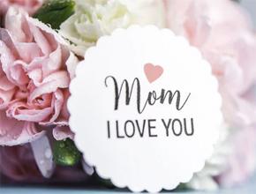 不能作母亲的人 Comfort Moms